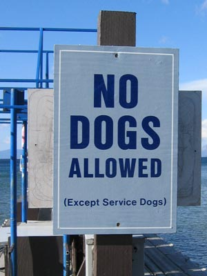 no_dogs_allowed.jpg